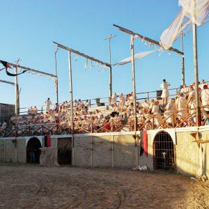 Gladiator-arena-25