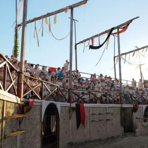 Gladiator-arena-26