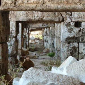 Perge-ancient-city-Excavations-121