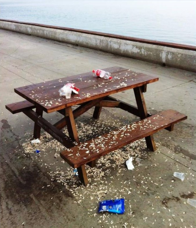Every picnic table in every beauty spot