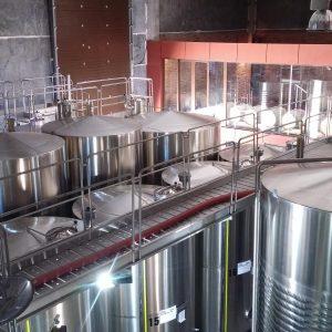 Vineyards-Elmali-Lykia-Wines-11