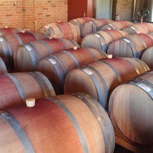 Vineyards-Elmali-Lykia-Wines-16