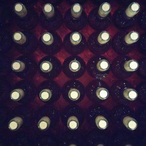 Vineyards-Elmali-Lykia-Wines-20