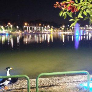 Sarah-Brightman-Concert-Expo-Antalya-8